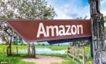 亚马逊跨境电商是什么,优势在哪里?